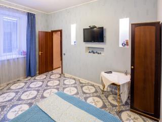 Apartment at Lviv near Opera House - Lviv vacation rentals