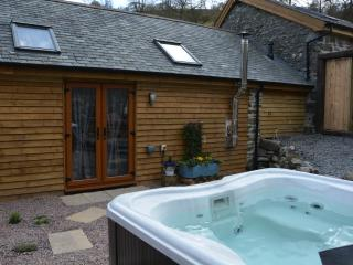 Romantic 1 bedroom Carno Converted chapel with Television - Carno vacation rentals