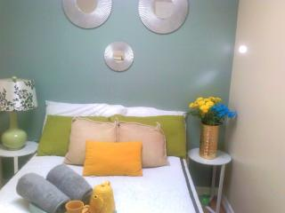 Beautiful Condo with Internet Access and Wireless Internet - Brooklyn vacation rentals