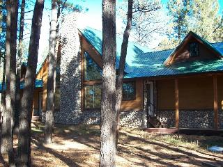 Book this beautiful vacation home in Pagosa Springs, for an amazing memory-filled vacation. - Pagosa Springs vacation rentals