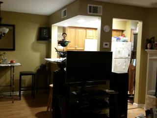 Cozy Condo with Television and DVD Player - Lafayette vacation rentals