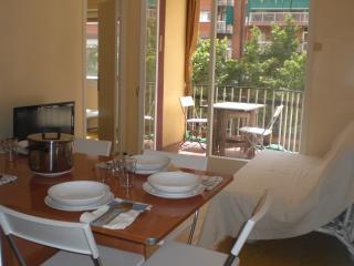 SANTS AREA, LIFT, BALCONY, CALM, BRIGHT, METRO L1-L5, 3 BEDROOMS - Barcelona vacation rentals
