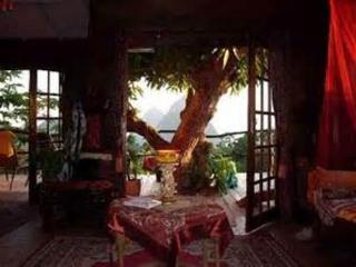 The Elegant  RomanticTree house - Soufriere vacation rentals