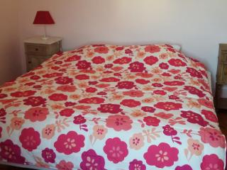 Bright 2 bedroom Saint-Victor-de-Malcap Bed and Breakfast with Internet Access - Saint-Victor-de-Malcap vacation rentals
