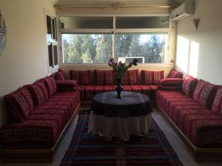 Modern Fes / Fez Apartment in downtown Fez/ Fes - Fes vacation rentals