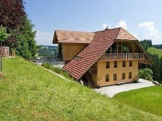 Beautiful Condo with Internet Access and Dishwasher - Schafhausen vacation rentals