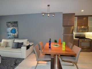 Luxurious and Spacious 2 Bedroom 2 Bathroom Apartment in Santa Monica - Santa Monica vacation rentals