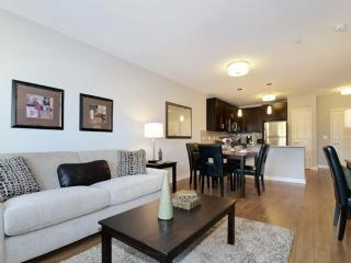 Super Cool 3 Bedrooms, 3 Bathroom Apartment - Up For Grab! - Evanston vacation rentals