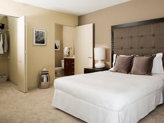Impressive 3 Bedroom, 2 Bathroom Apartment in Chicago - Chicago vacation rentals