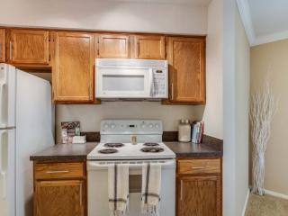 Fully Furnished 2 Bedroom, 2 Bathroom Apartment - Refreshing and Clean - Schaumburg vacation rentals
