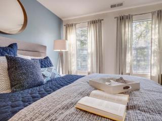 Charming 1 Bedroom Apartment in Schaumburg - Schaumburg vacation rentals
