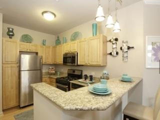 Comfortable 2 bedroom Condo in Naperville with Internet Access - Naperville vacation rentals