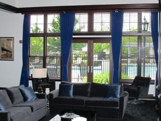 1 bedroom Condo with Internet Access in Naperville - Naperville vacation rentals