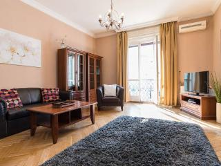 Deluxe apt in Budapest center - Budapest vacation rentals