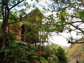Romantic 1 bedroom Vilcabamba Guest house with Internet Access - Vilcabamba vacation rentals