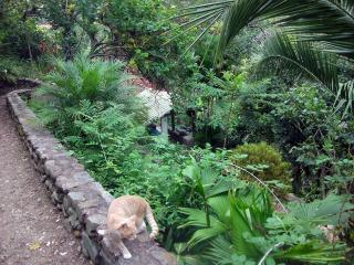 2 bedroom Guest house with Internet Access in Vilcabamba - Vilcabamba vacation rentals
