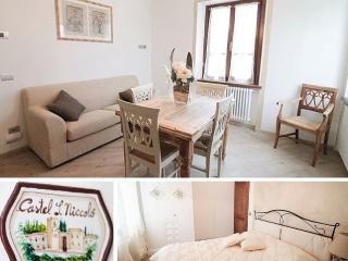 Romantic 1 bedroom Apartment in Castel San Niccolo - Castel San Niccolo vacation rentals