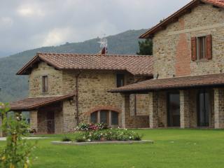 Romantic 1 bedroom Condo in Castel San Niccolo - Castel San Niccolo vacation rentals