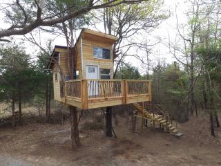 Ra's Eufaula Treehouse Tree-sort = Real Treehouse in 2 trees - Eufaula vacation rentals