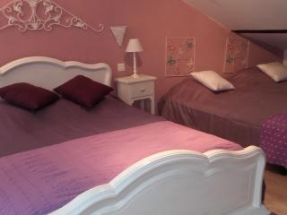 Nice Guest house with Internet Access and A/C - Bordezac vacation rentals