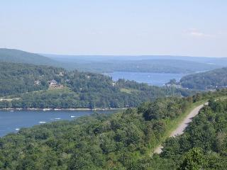 Exquisite 5 Bedroom Mountain Home offers breathtaking panoramic lake views! - McHenry vacation rentals