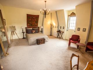 Château de Jalnay, suite TOUR DE CHEVALIER - Glenouze vacation rentals