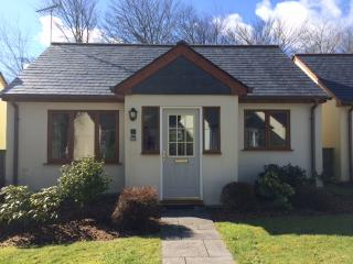 Perfect Cottage with Tennis Court and Satellite Or Cable TV - Davidstow vacation rentals
