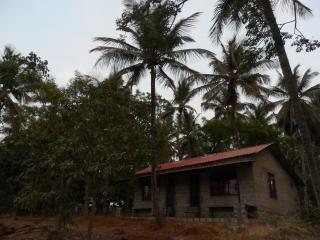 Ananka Riverside - Mysore vacation rentals