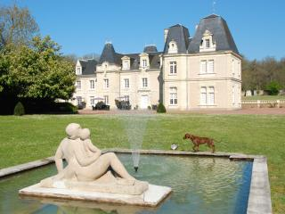 Beautiful château with room  JOKER - Glenouze vacation rentals