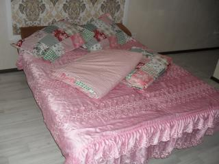 Comfortable Krasnodar vacation Condo with Housekeeping Included - Krasnodar vacation rentals