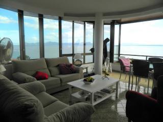 best spot apartment in Puerto Alcudia - Puerto de Alcudia vacation rentals
