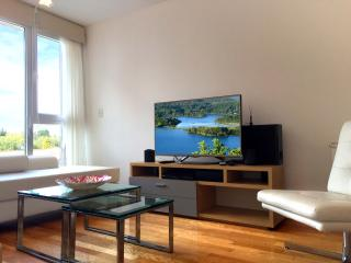 PERFECT CONDO FOR A ROMANTIC GETAWAY! - San Carlos de Bariloche vacation rentals