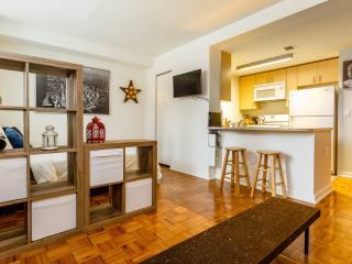 Chic Midtown Luxury Apt Sleeps 5 - New York City vacation rentals