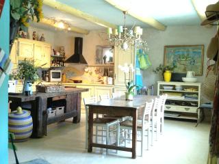 Art Lover's Period Stone House in charming village - Vers-Pont-du-Gard vacation rentals