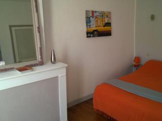 Plein Centre Amélie-les-Bains 2/4pers prox Thermes - Amelie-les-Bains-Palalda vacation rentals
