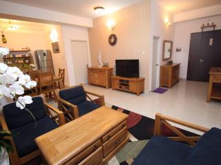 Modern Home Comfort 3BR Apartment - City View - Ho Chi Minh City vacation rentals