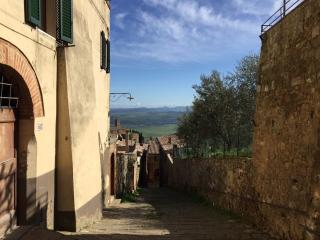 Beauty and Serenity in a Premium Montalcino Area - Montalcino vacation rentals
