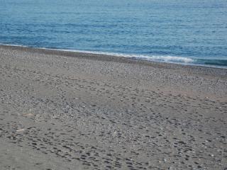 Appartamento 50 m dal mare Cetraro Marina Calabria - Cetraro vacation rentals
