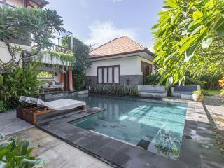 Lotus Villa 6 bedrooms & pool, max 18 persons. - Sanur vacation rentals