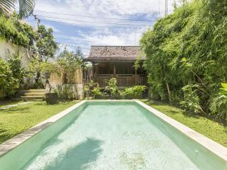 A pretty & cute house in Urmala in peace & harmony - Seminyak vacation rentals