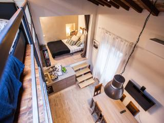 Florence Loft sleeps 6, free Wifi, modern and cosy - Florence vacation rentals