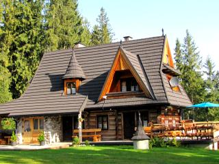 Bajkowa Chata - Tatra Ski Challets - Murzasichle vacation rentals