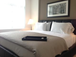 Executive Living With 2 Bedrooms and 2 Bathrooms in Kendall Square - Cambridge vacation rentals