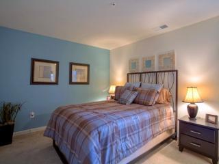 Beautiful 2 Bedroom, 2 Bathroom Apartment in Lexington - Lexington vacation rentals
