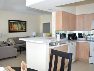 Spectacular - Bright 2 Bedroom, 2 Bathroom Waltham Apartment - Waltham vacation rentals