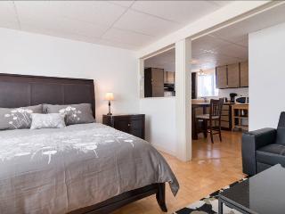 Cozy Levis Studio rental with Internet Access - Levis vacation rentals