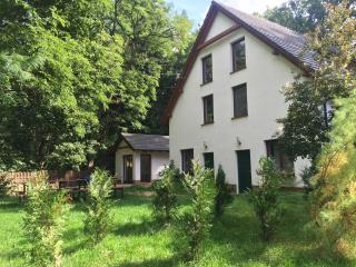 2 x Studio with BBQ, squash in the wood + golf - Gryzyna vacation rentals