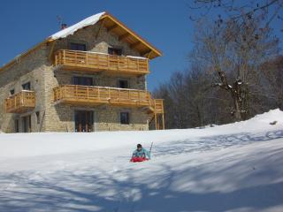 Lovely Gite in Saint-Martin-en-Vercors with Television, sleeps 11 - Saint-Martin-en-Vercors vacation rentals