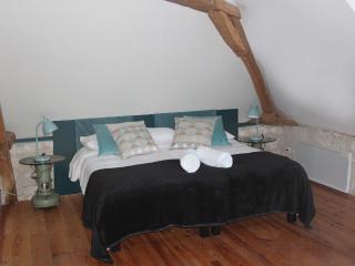 chambre aquarelle - la chambre vintage - Sainte-Maure-de-Touraine vacation rentals