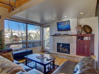 Luxurious and Contemporary; Easy Walk to Gondola - Steamboat Springs vacation rentals